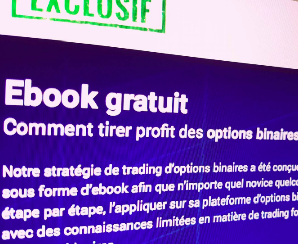 Exemple de rédaction web : options binaires (2)