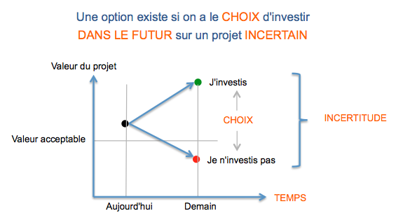 Analyse par les options réelles