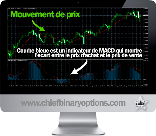 graphique des options binaires du dollar euro)